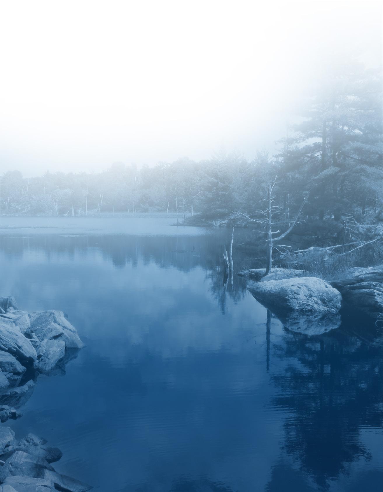 Beacon Environmental - Lake and woods - Blue Duo Tone